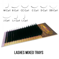 """Eyelashes Paradise"" Lashes mixed trays"