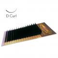 D-Curl Lashes